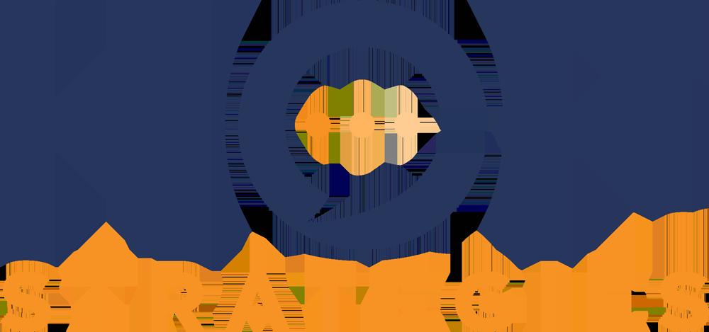 Heidi Cayn Friedman Strategies Logo